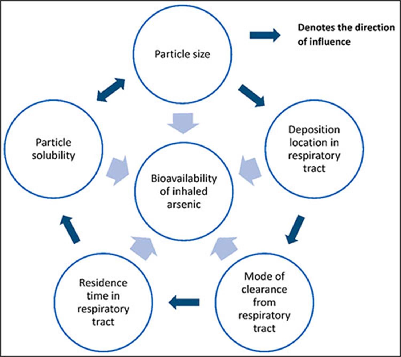 Arsenic Dust Diagram
